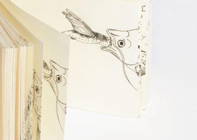 Les volants – folioscopes